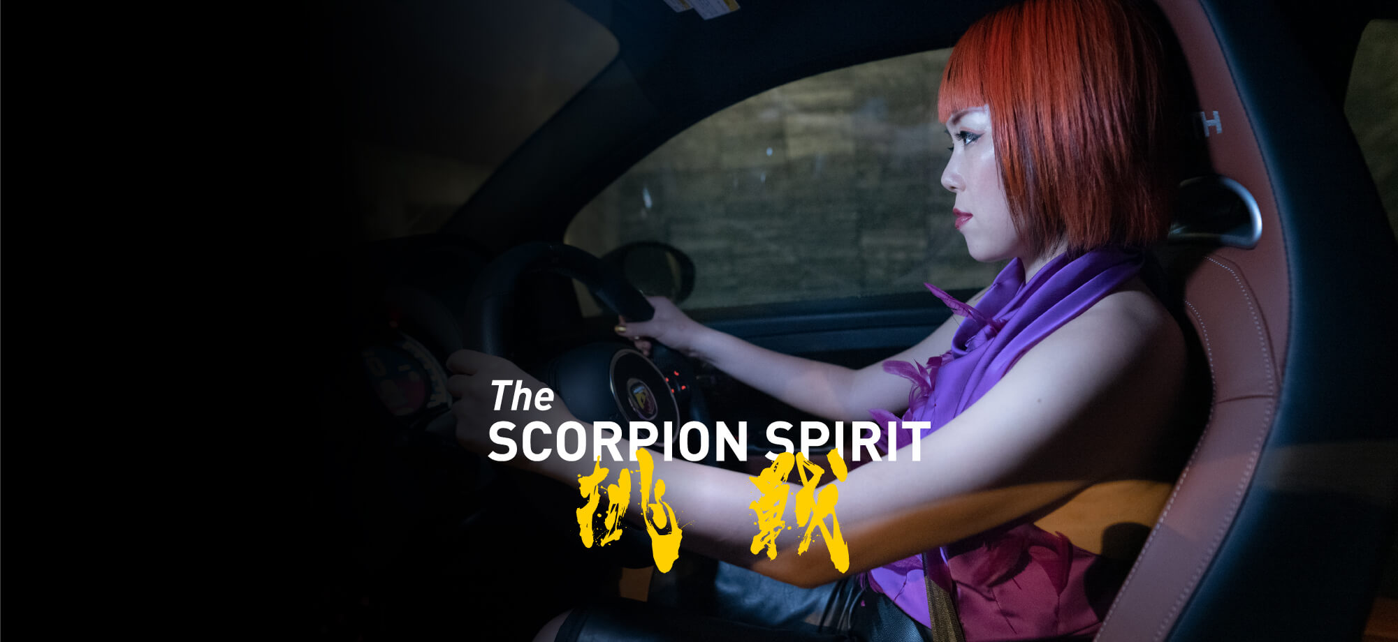The SCORPION SPIRIT